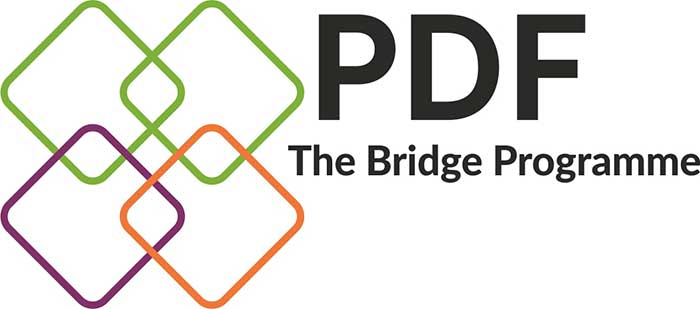 The PDF Bridge Programme